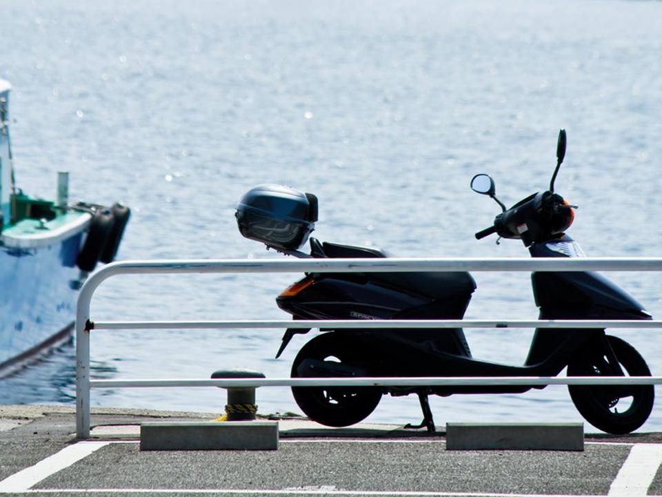 自転車で!バイクで!「京都府立植物園」