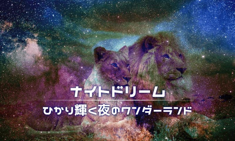 豊橋総合動植物公園ナイトドリーム開催!